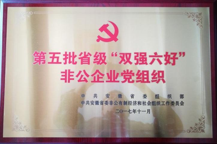 """2017年省非公企业""""双强六好"""""""