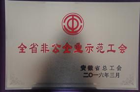 全省非公企业示范工会