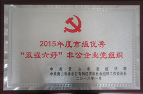 """黄山市""""双强六好""""党组织"""