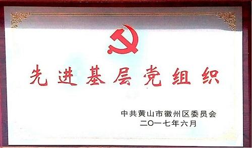 2017年先进基层党组织