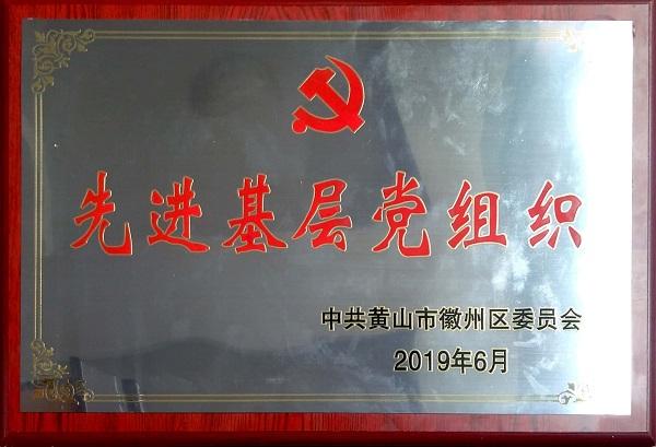 2019先进基层党组织
