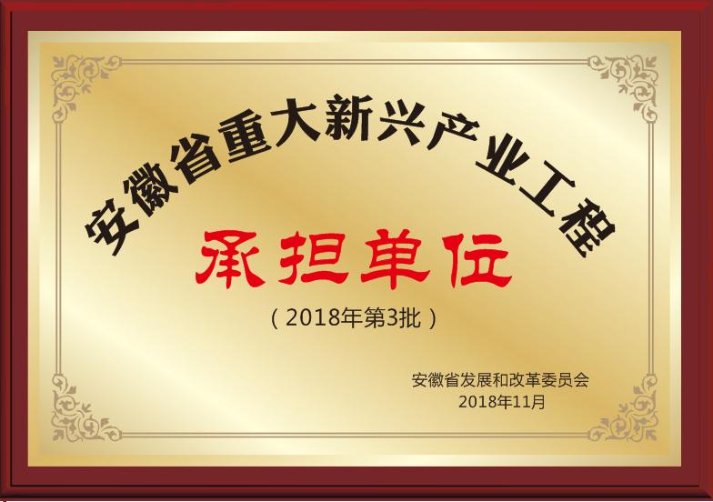安徽省重大新兴产业工程承担单位