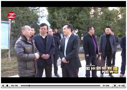 黄山常委刘孝华_市委常委,常务副市长刘孝华带队考察恒泰化工